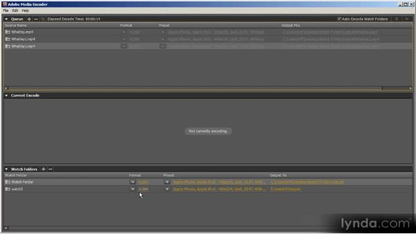 Watch folders: Up and Running with Adobe Media Encoder