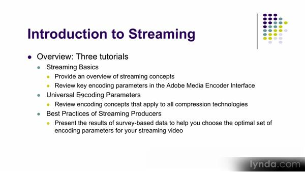 Terms and terminology: Up and Running with Adobe Media Encoder