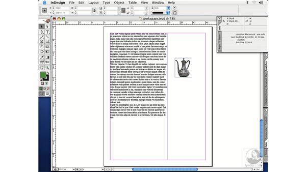 info palette: InDesign CS Essential Training