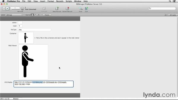Using HTML5 in the Web Viewer: FileMaker Pro 12 in Depth