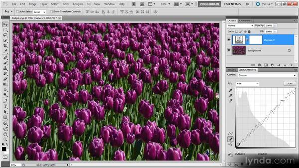 Creating a pencil posterization effect: Photoshop Curves Workshop