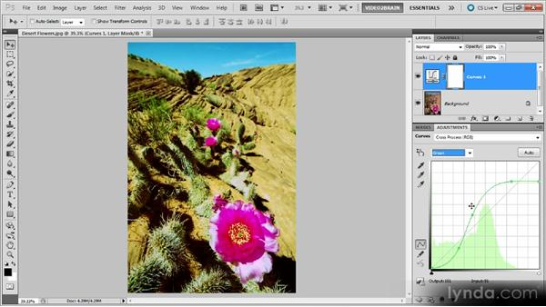 Creating a cross-processing effect: Photoshop Curves Workshop