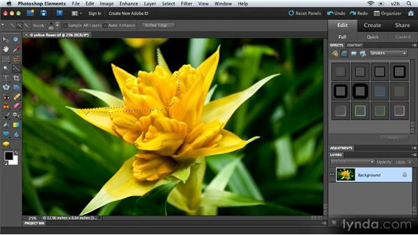 Using the Quick Selection tool: Combining Images with Photoshop Elements 9