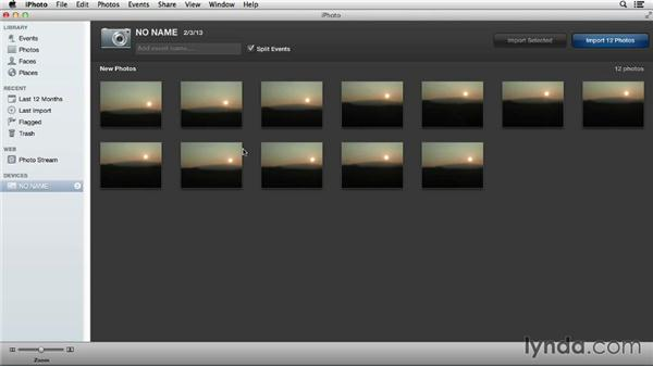 Comparing iPhoto and Aperture importing tools: Using iPhoto and Aperture Together
