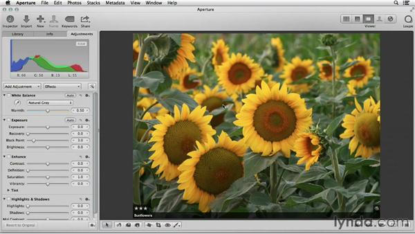 Comparing iPhoto and Aperture editing tools: Using iPhoto and Aperture Together