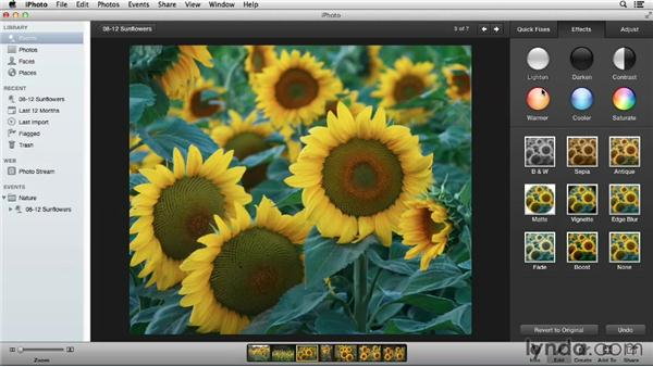 The five-step image edit in iPhoto: Using iPhoto and Aperture Together