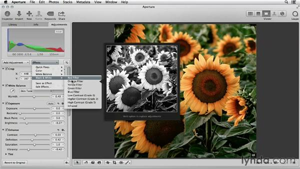 Converting to black and white in iPhoto and Aperture: Using iPhoto and Aperture Together