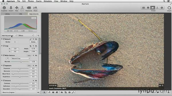Applying effects in iPhoto and Aperture: Using iPhoto and Aperture Together
