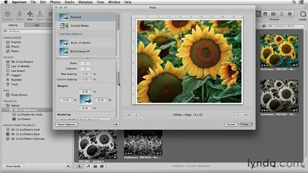 Making a basic print in Aperture: Using iPhoto and Aperture Together