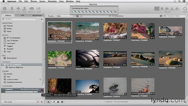 Using Aperture to back up your iPhoto library: Using iPhoto and Aperture Together