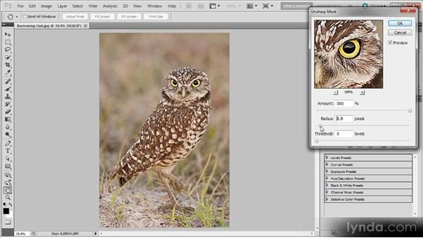 Using Unsharp Mask: Photoshop Sharpening Power Workshop