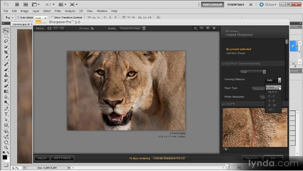 Nik Sharpener Pro: Photoshop Sharpening Power Workshop