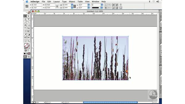 placing art: InDesign CS Essential Training
