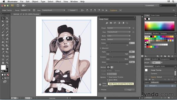 Basic tracing: Photos: Tracing Artwork with Illustrator