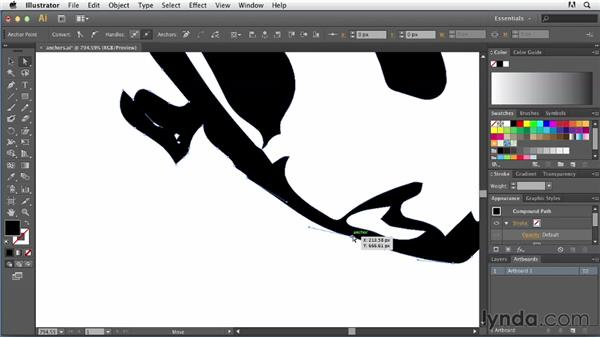 Removing unwanted anchor points: Tracing Artwork with Illustrator