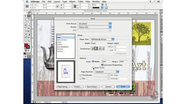 print dialog box: InDesign CS Essential Training