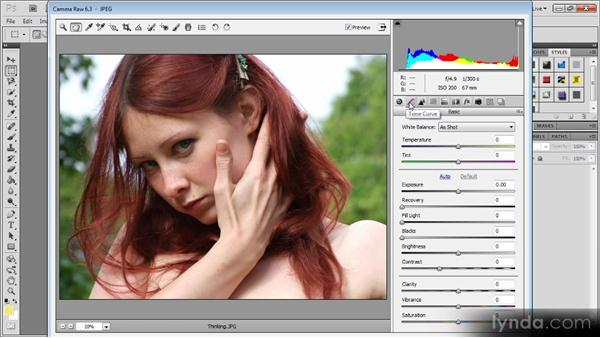 Introducing Camera Raw: Photoshop CS5 for Video Editors