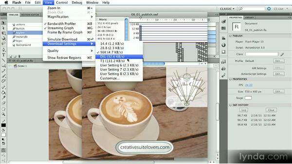 Options for testing your movie: Introduction to Flash Animation