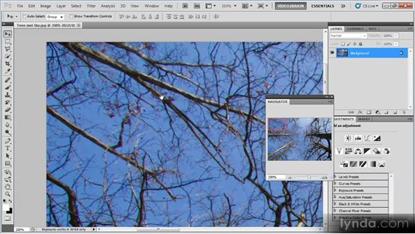 Reviewing the image: Photoshop Image Cleanup Workshop