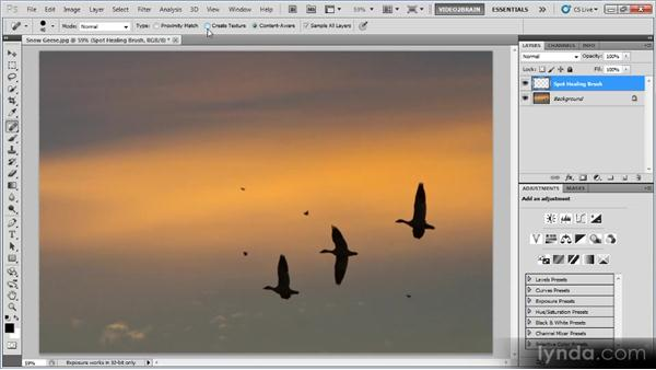 The Spot Healing Brush: Photoshop Image Cleanup Workshop