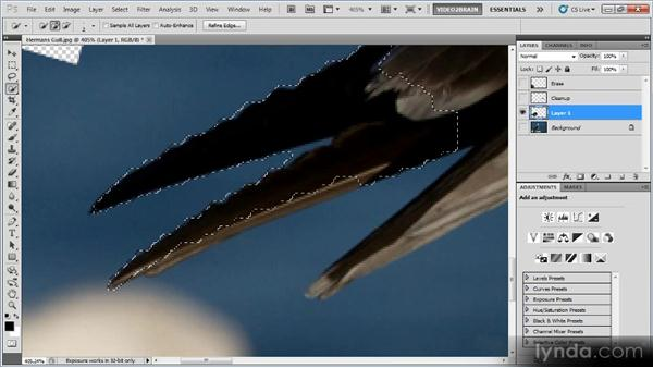 Erasing and replacing: Photoshop Image Cleanup Workshop