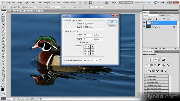Extending the frame: Photoshop Image Cleanup Workshop