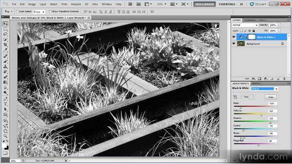 Adding an infrared effect: Photoshop Creative Effects Workshop