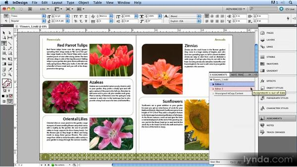 Delegating stories with assignments: Up and Running with InCopy CS5