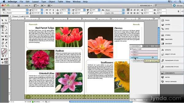 Working with remote users: Up and Running with InCopy CS5