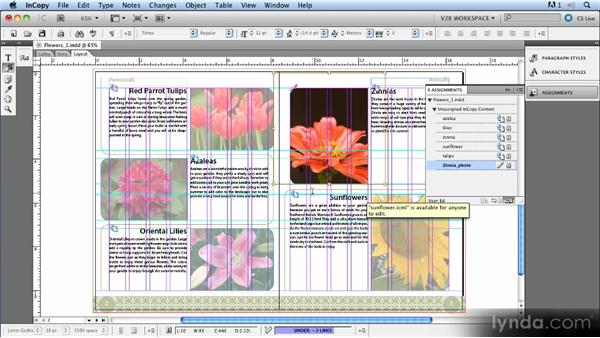 Working with graphics: Up and Running with InCopy CS5