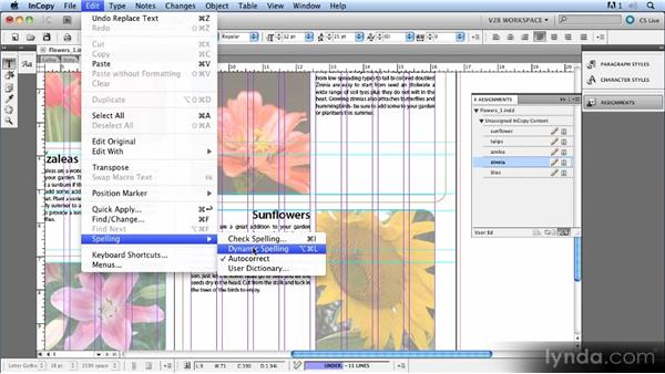 Checking spelling: Up and Running with InCopy CS5