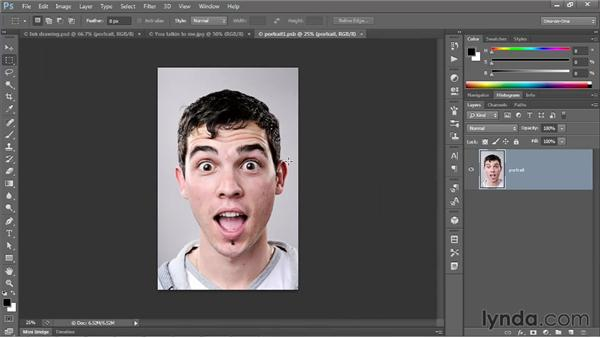 Duplicating a complex Smart Filter sequence: Photoshop CS6 One-on-One: Mastery