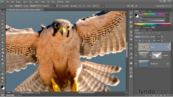 Introducing the Puppet Warp command: Photoshop CS6 One-on-One: Mastery
