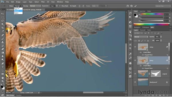 Adjusting the Expansion value: Photoshop CS6 One-on-One: Mastery