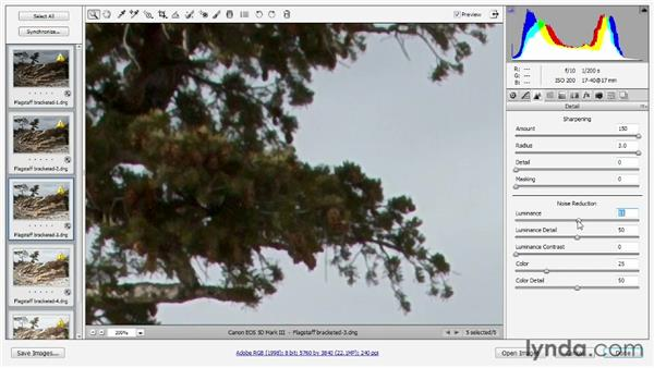 Preparing bracketed photos in Camera Raw: Photoshop CS6 One-on-One: Mastery
