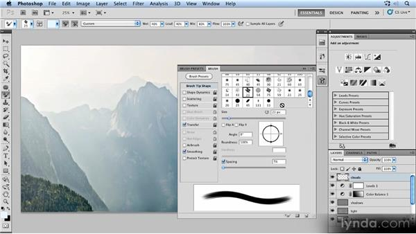 Painting clouds with the Mixer Brush: Photoshop Artist in Action: Uli Staiger's Powered by Nature