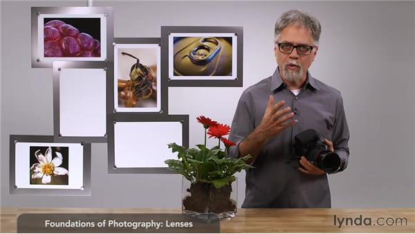 Comparing wide lens and telephoto: Foundations of Photography: Macro and Close-Up