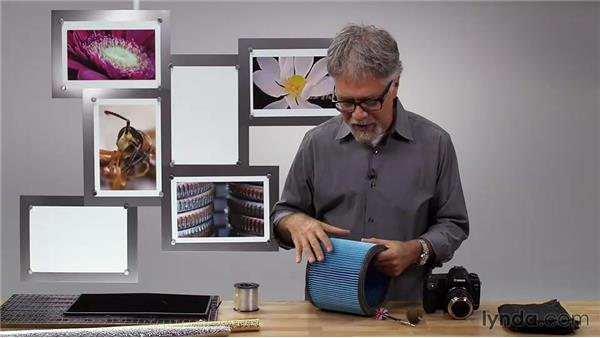 Working with backdrops for macro: Foundations of Photography: Macro and Close-Up