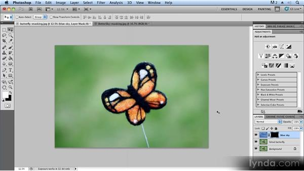 Using layer masks to improve backgrounds: Advanced Craft Photography