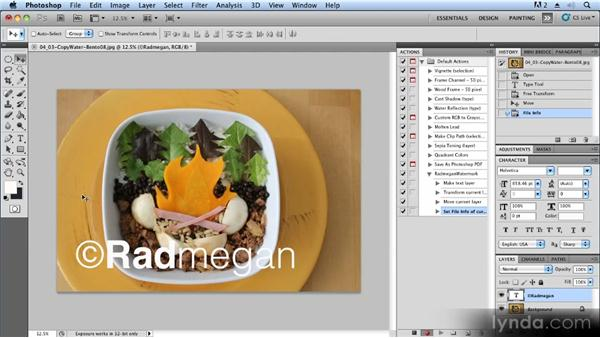 Adding watermarks and copyright info: Advanced Craft Photography