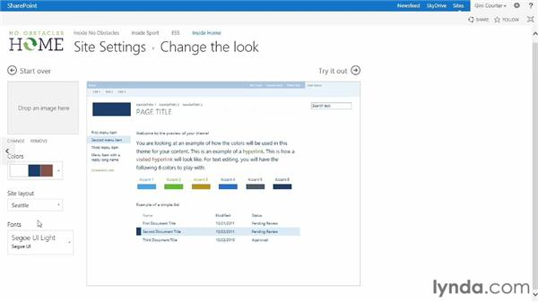 Changing the look of your site: SharePoint 2013 Essential Training