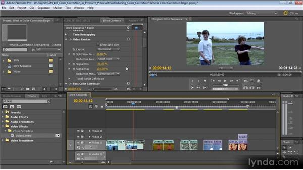 What is color correction and why do you need it?: Color Correction with Premiere Pro CS5.5