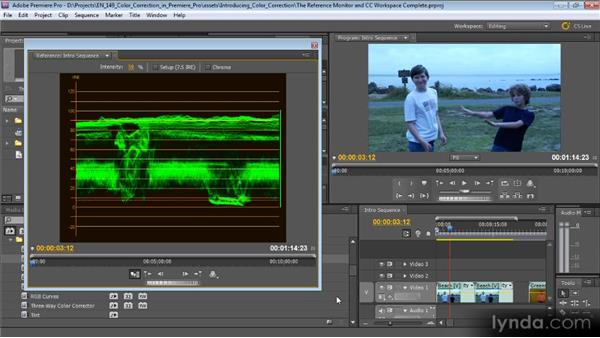 The Reference Monitor and the color correction workspace: Color Correction with Premiere Pro CS5.5