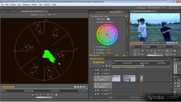 The Vectorscope: Color Correction with Premiere Pro CS5.5