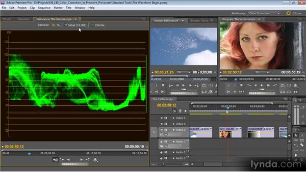 The Waveform: Color Correction with Premiere Pro CS5.5