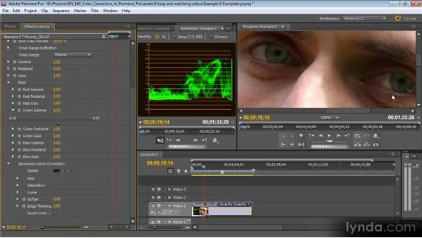 Example five: Highlighting eyes: Color Correction with Premiere Pro CS5.5