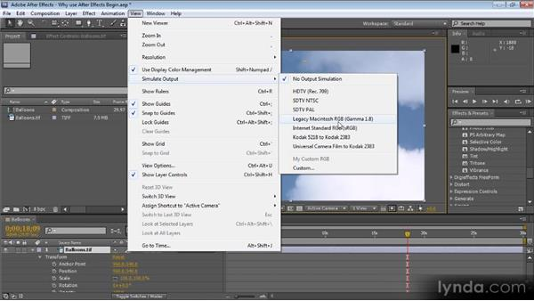 Why use After Effects?: Color Correction with Premiere Pro CS5.5
