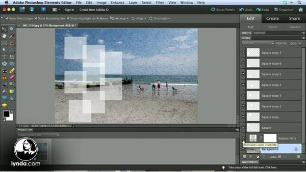 Welcome: Getting Started with Photoshop Elements 10