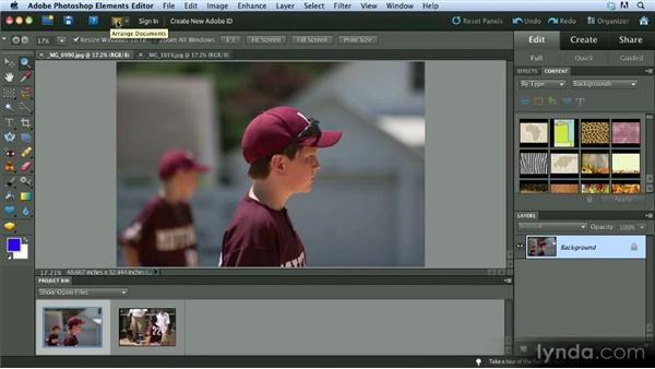 The Editor: Getting Started with Photoshop Elements 10