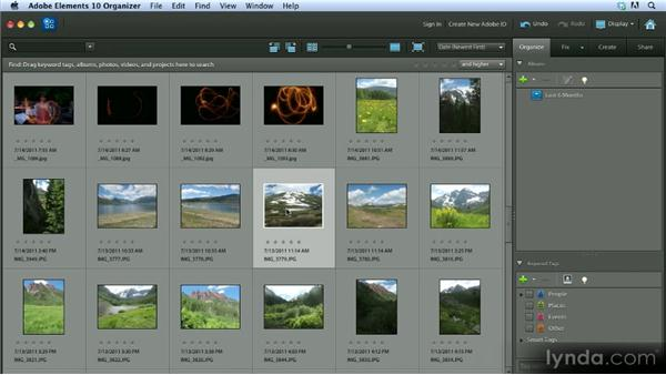 Basic organization: Getting Started with Photoshop Elements 10